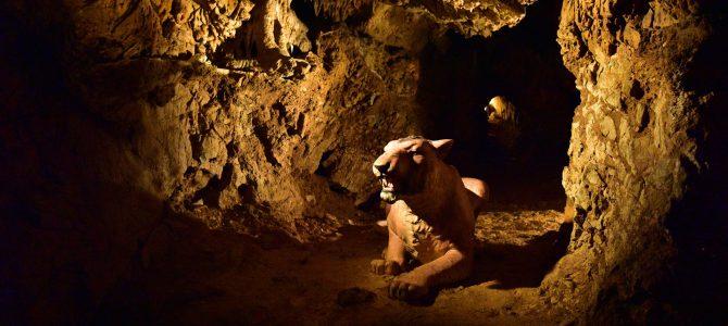 Jeskyně Výpustek, poutní kostel Křtiny a Rudické propadání