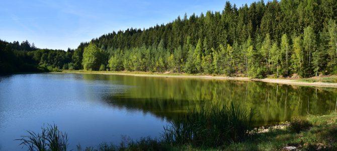 K Wolemannovu (Wolmannovu) rybníku