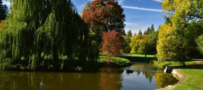 Podzim v Průhonickém parku