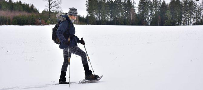 Se Sněžnicí na Brdy